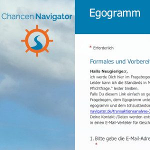Egogramm, Fragebogen, Persönlichkeitsentwicklung